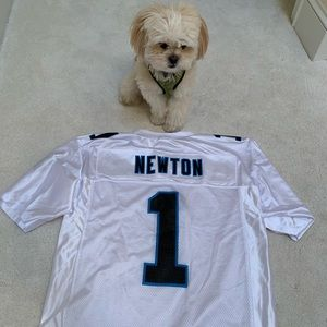 low priced 16296 ab8c8 Cam Newton Official NFL Panthers Football Jersey